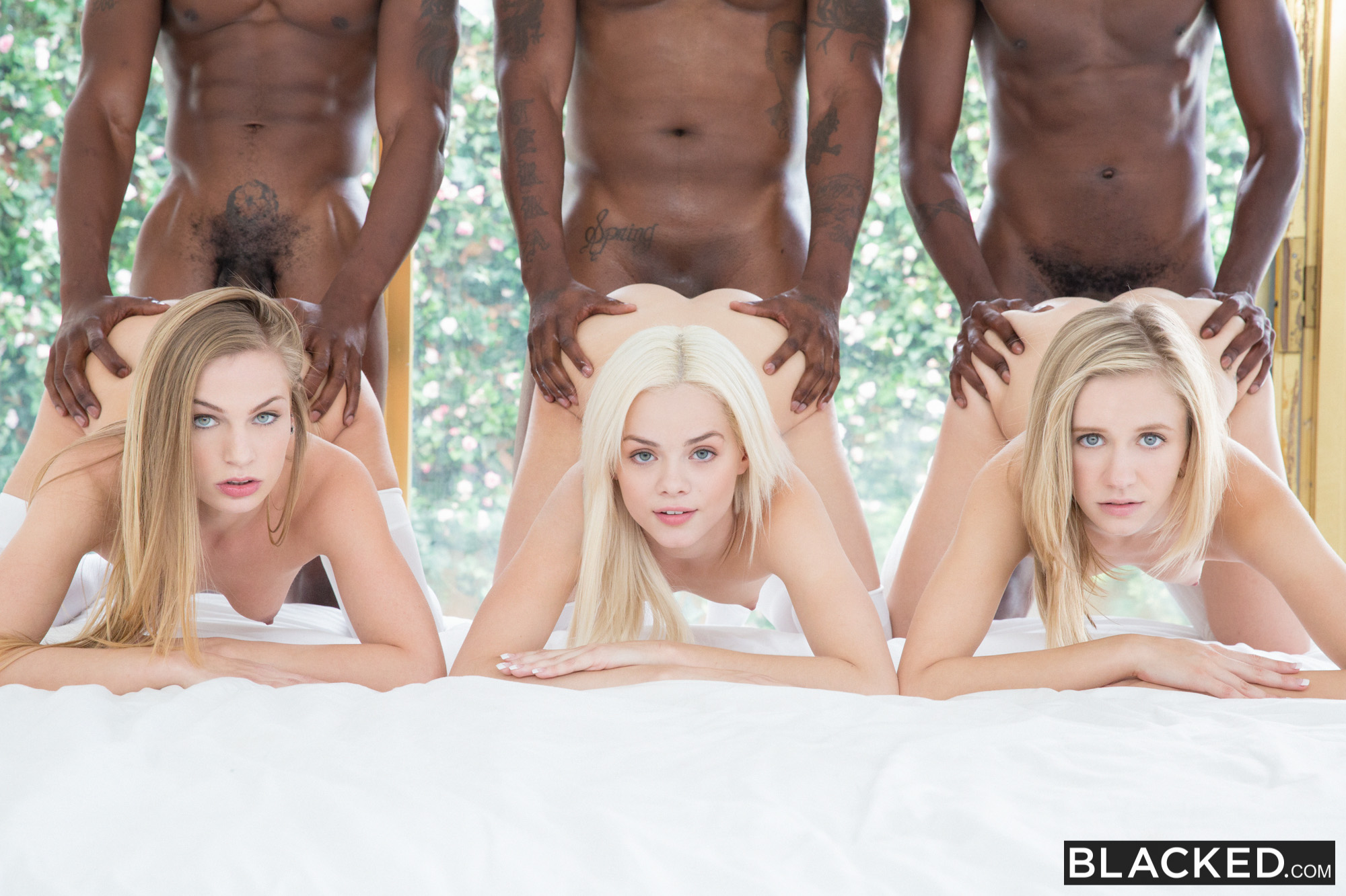 2 Big Black Asses Threesome